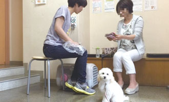 つきしま動物病院 しつけ教室